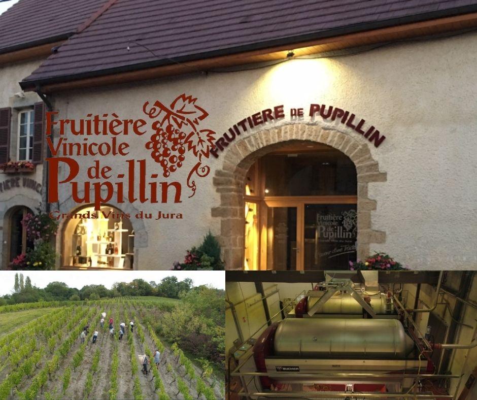 Fruitière vinicole de Pulillin, vignobles, chai