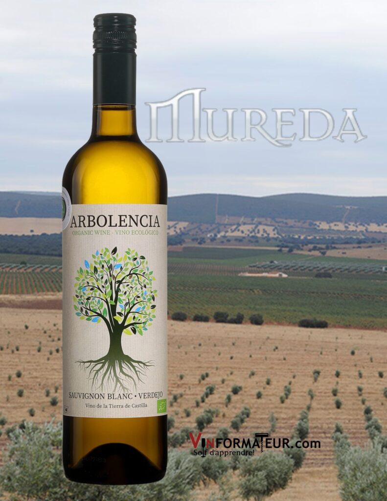 Bouteille de Arbolencia, Sauvignon blanc, Espagne, Vin de la Tierra de Castilla, vin blanc bio et vegan, 2020