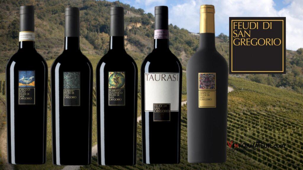 De superbes vins de la maison Feudi di San Gregorio soit Albente 2019, Greco di Tufo 2020, Rubrato 2019, Taurasi 2016 et Serpico 2014.
