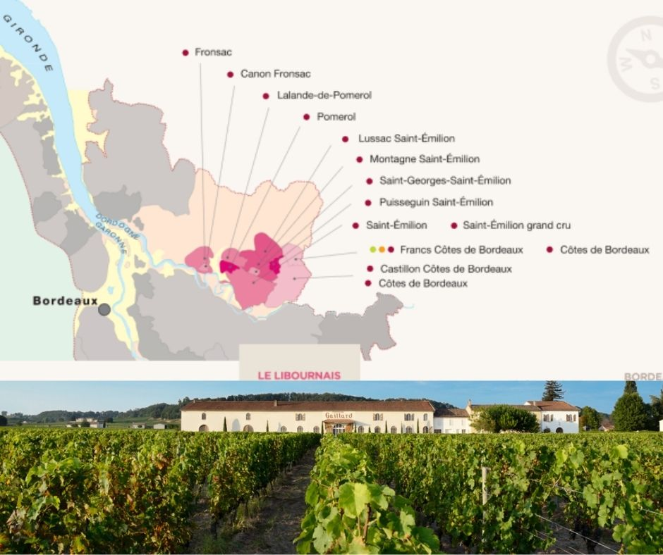 Carte viticole Saint-Émilion