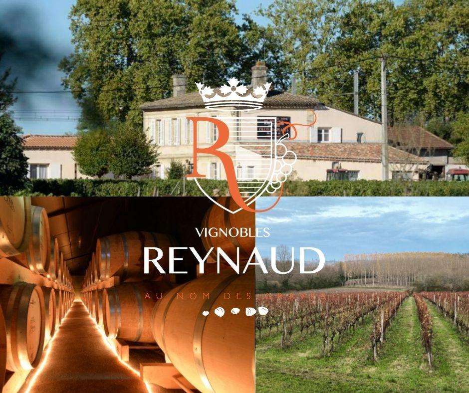 Vignobles Reynaud, chai, vignobles